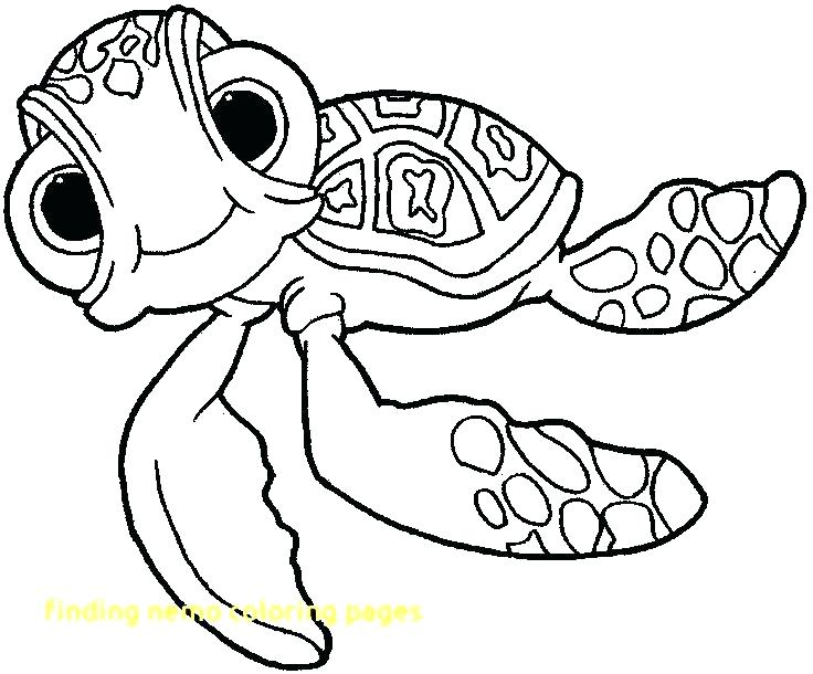 736x610 Finding Nemo Color Pages Finding Coloring Page Finding Coloring
