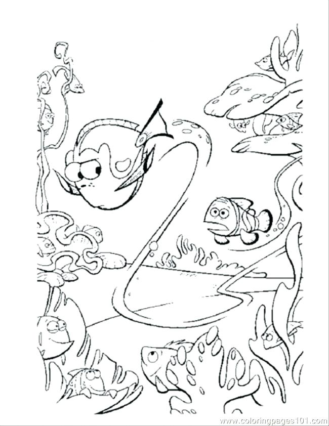 650x842 Nemo And Dory Coloring Pages Printable Coloring Pages Coloring