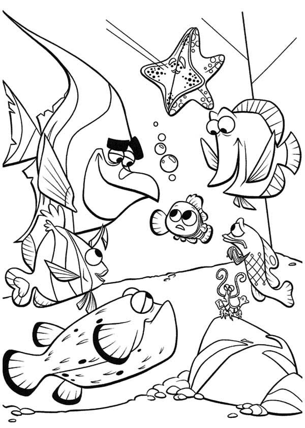 600x843 Finding Nemo Coloring Pages