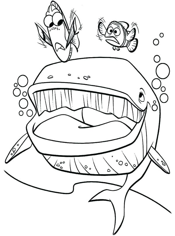600x805 Finding Nemo Coloring Pages Coloring Pages Finding Coloring Page
