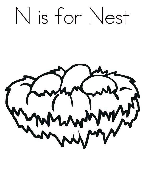 600x776 Bird Nest, N Is For Bird Nest Coloring Pages Mfw Kindergarten