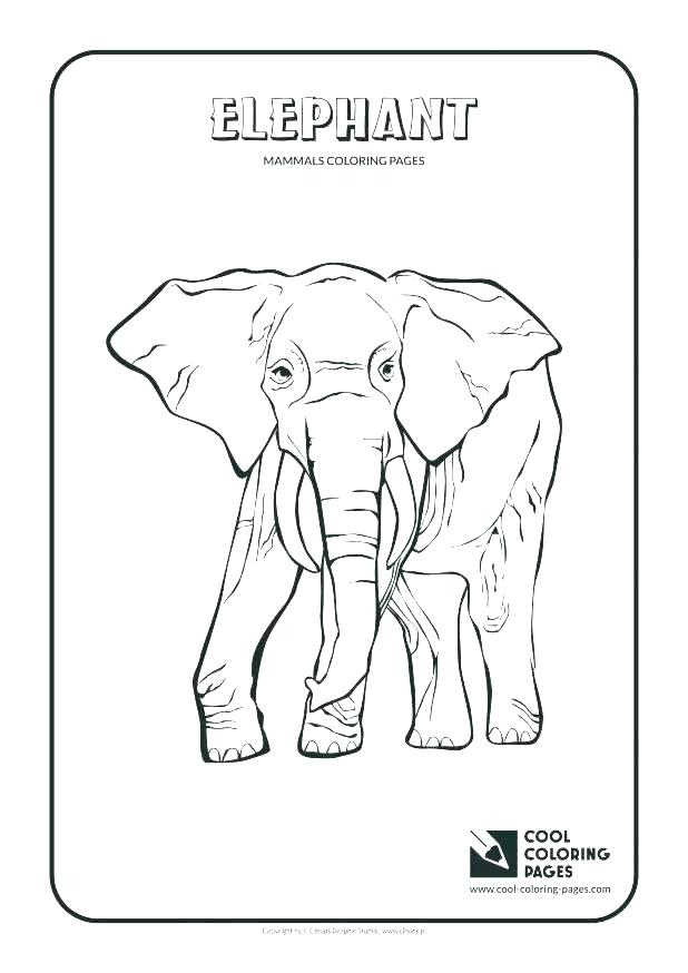 618x874 Reptile Coloring Page Reptiles Coloring Pages Ideas Reptile