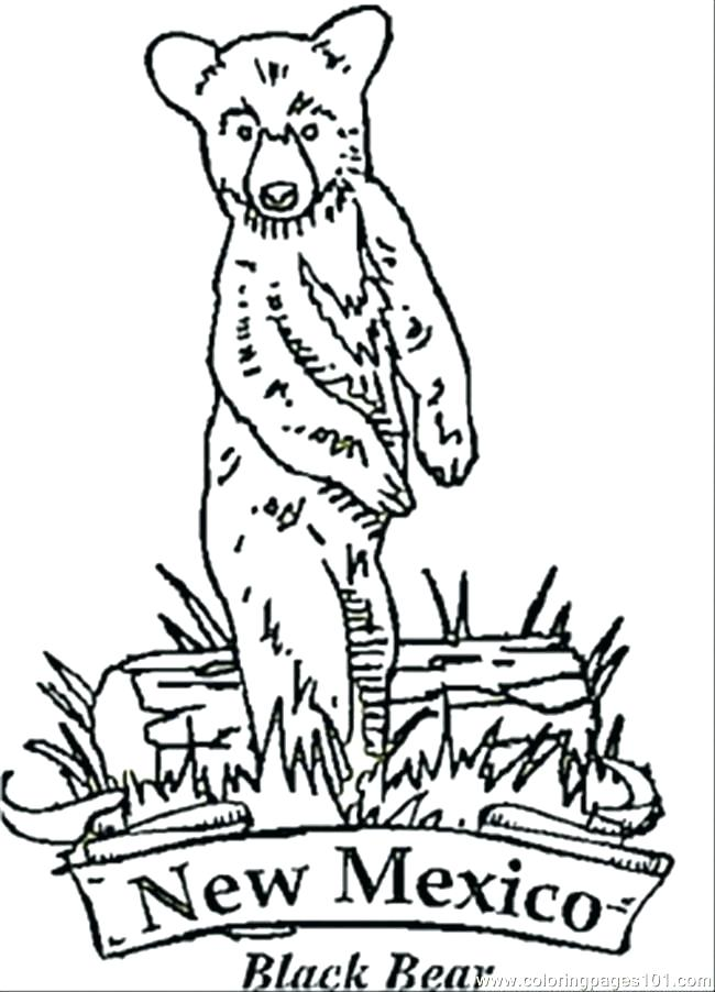 650x902 New Mexico Coloring Pages New Coloring Pages New Bear Coloring