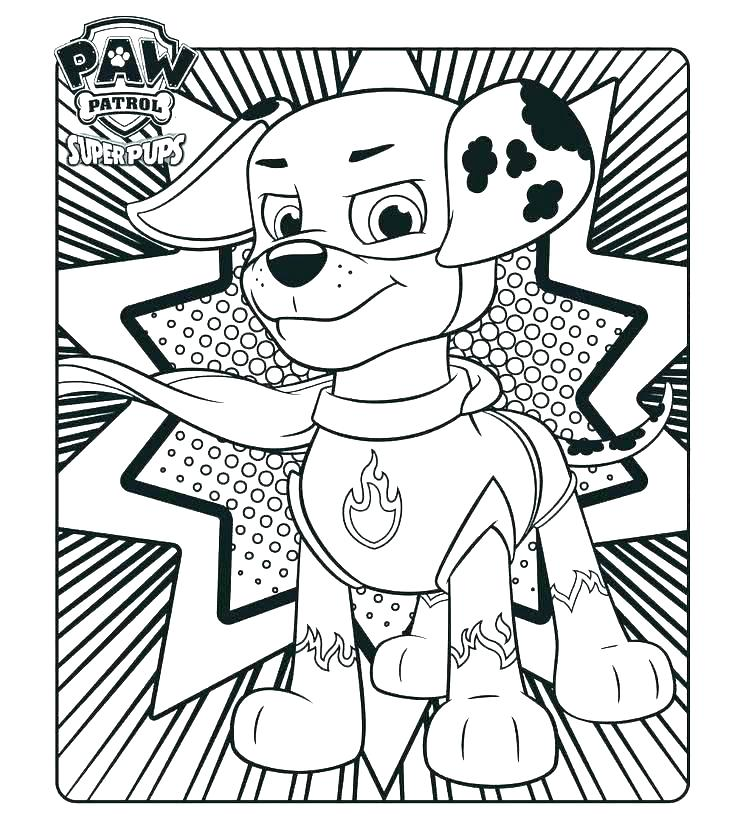736x833 Paw Patrol Coloring Pages Able Paw Patrol Coloring Pages Ryder