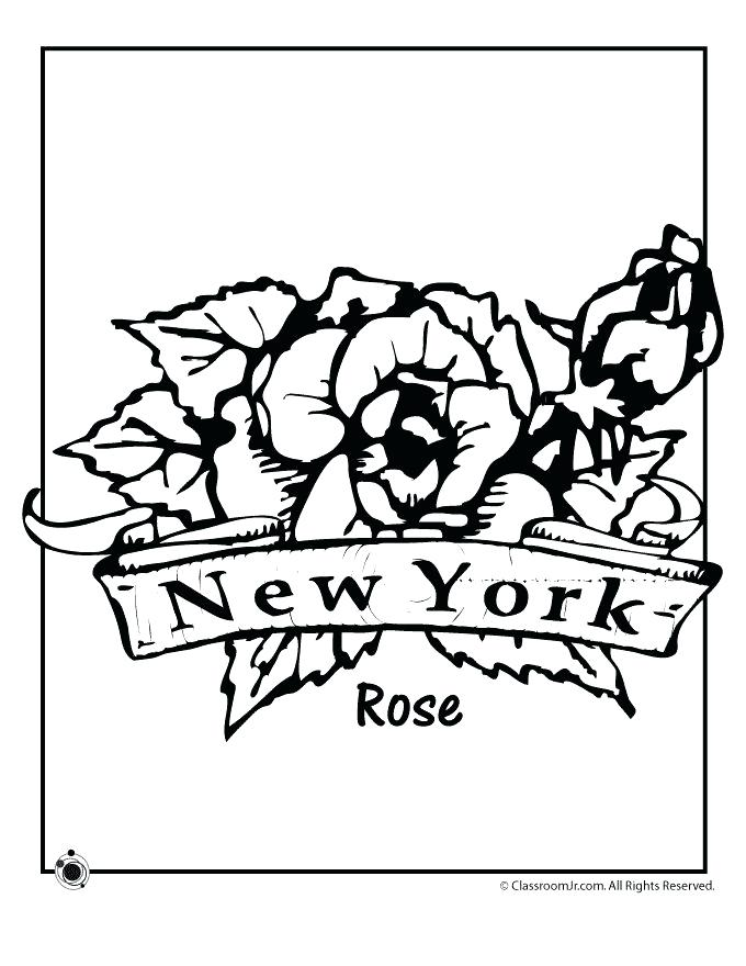 680x880 State Flower Coloring Pages