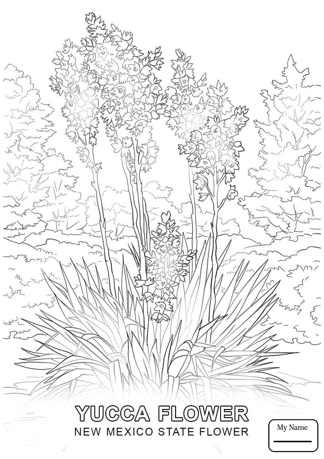 New Mexico Coloring Pages