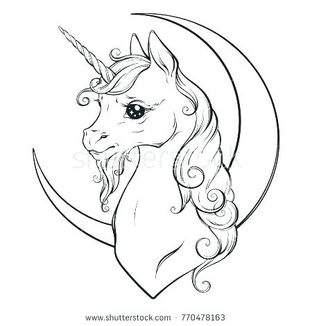 450x470 Unicorn Color Pages Unicorn Pictures To Color Fairy And Unicorn