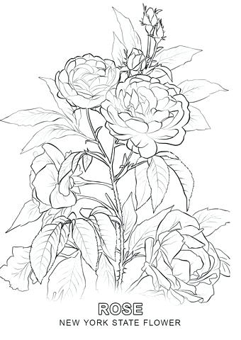 340x480 New York Coloring Pages Skyline Coloring Pages Adult Coloring Page