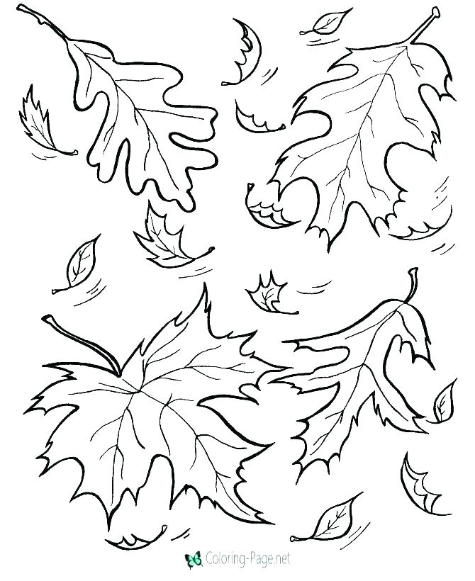 670x820 Coloring Page Fall Free Printable Autumn Coloring Pages Autumn