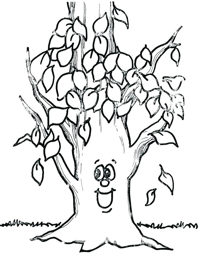 650x841 Coloring Page Fall Tree Without Leaves Coloring Page Fall Tree