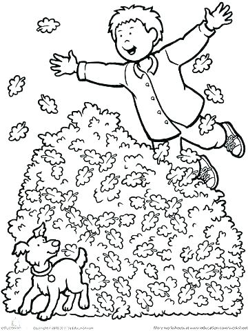 360x480 Coloring Page Fall Amazing Fall Coloring Pages Or This Is Fall