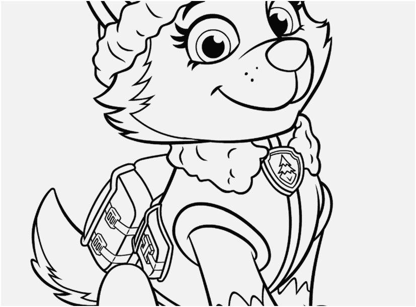 827x609 Nick Jr Coloring Pages Printable Display Paw Patrol Everest