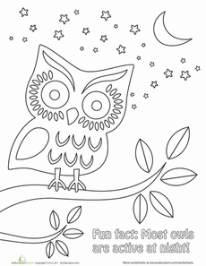 Night Time Coloring Pages