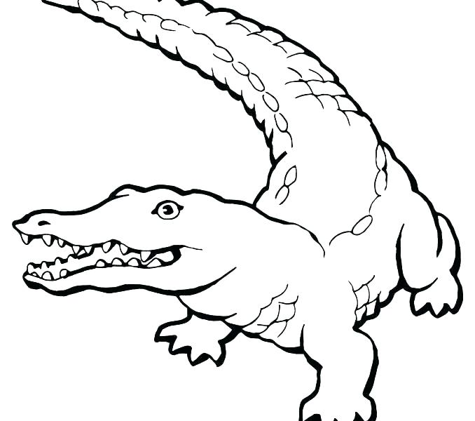 Nile Crocodile Coloring Page at GetDrawings.com | Free for ...