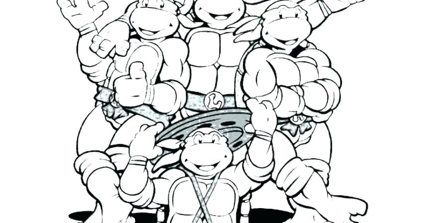 860x450 Turtle Color Pages