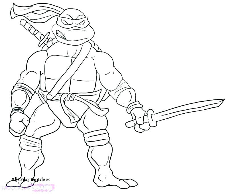 800x681 Michelangelo Ninja Turtle Color S S S Michelangelo Ninja Turtle