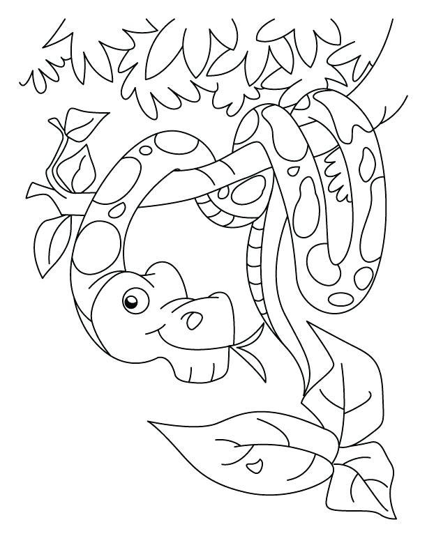 Ninjago Snake Coloring Pages At Getdrawings Com Free For