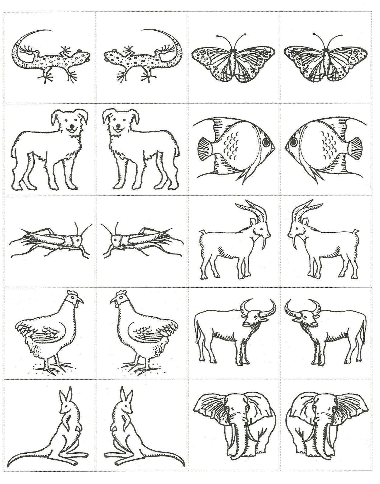 1257x1600 Inspiring Best Photos Of Animal Printouts For Noah Us Ark