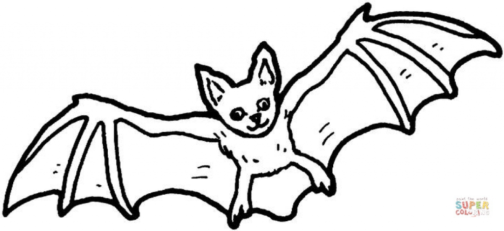 1024x471 Nocturnal Animals Coloring Pages Bat Coloring Page Free