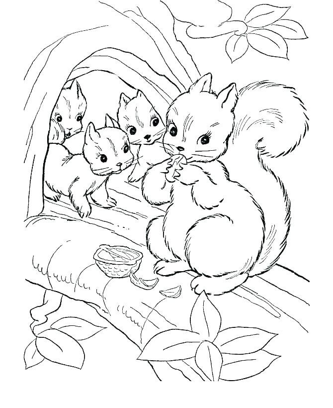 670x820 Wild Animal Coloring Pages Icontent