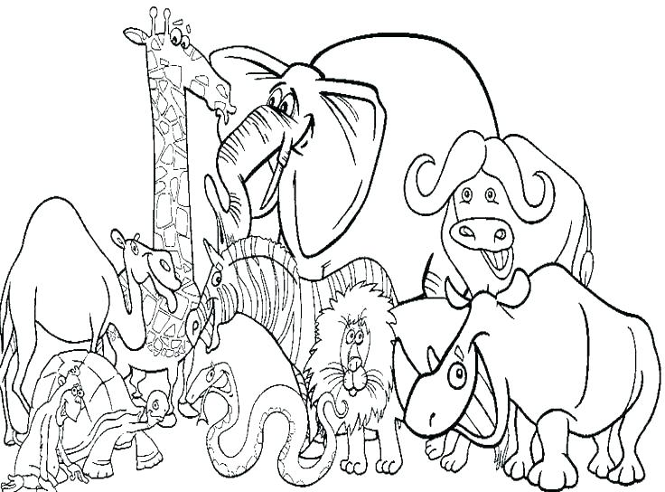 736x544 Coloring Animal Pages For Printing Animal Coloring Pages To Print