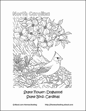 303x392 Mountain Coloring Pages Printables Appalachian Mountains