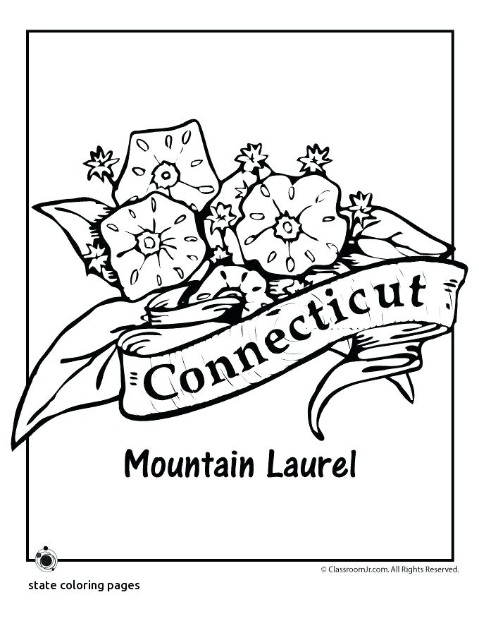 680x880 North Carolina State Symbols Coloring Pages Best And Embroidery
