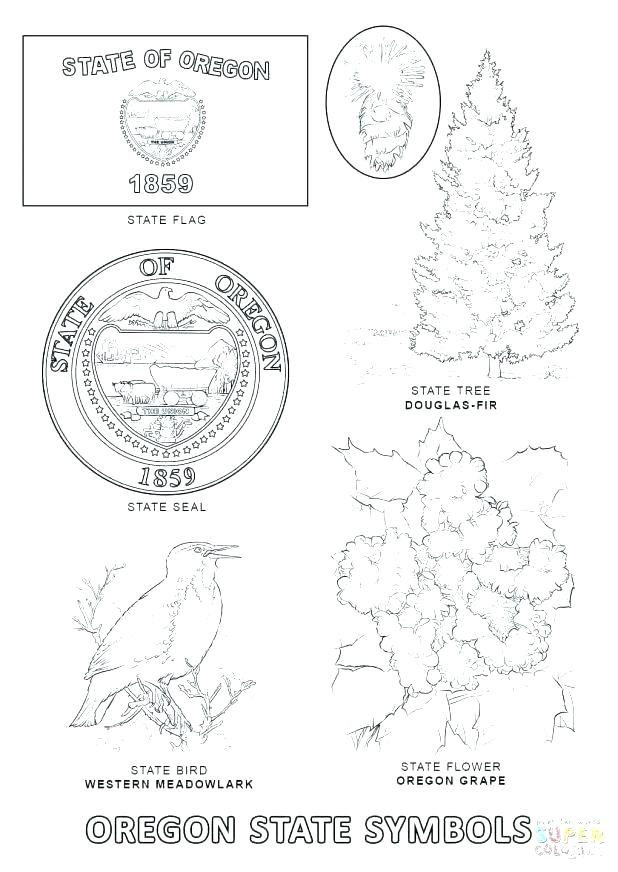 618x872 Florida State Flag Coloring Page State Symbols Coloring Page