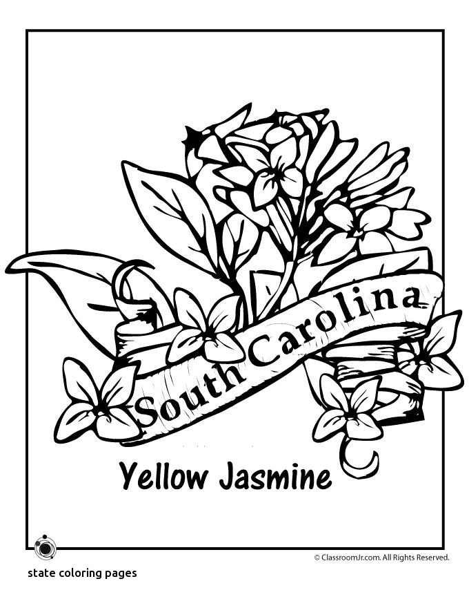 680x880 North Carolina State Symbol Coloring Page