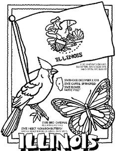 236x304 North Carolina State Symbol Coloring Page