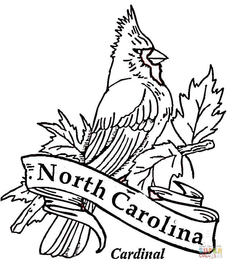 750x868 North Carolina State Symbols Coloring Pages
