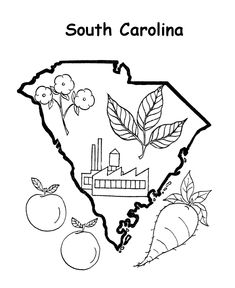 235x288 South Carolina State Symbol Coloring Page