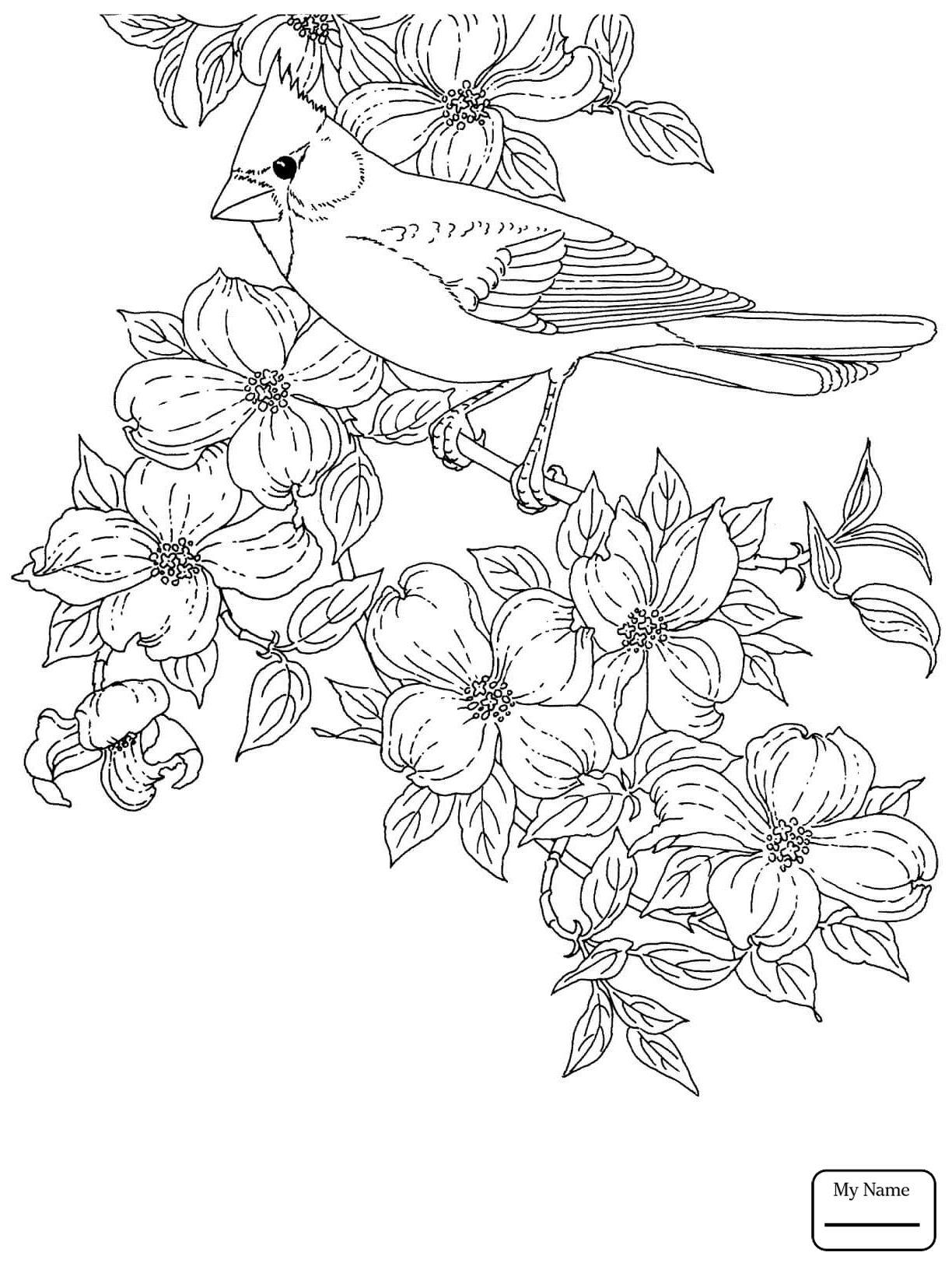 1224x1632 Astonishing South Carolina State Symbols Coloring Page Printable