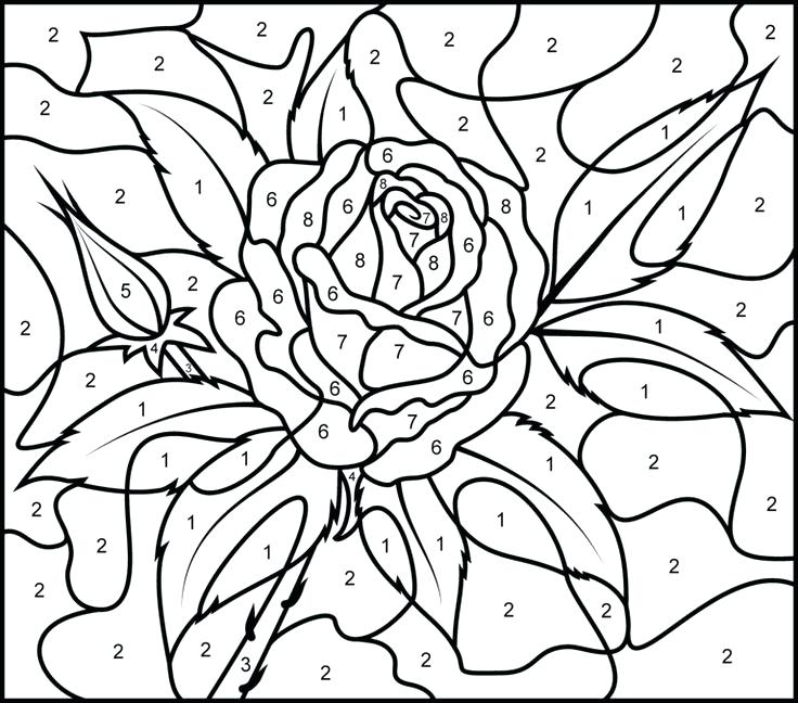 736x648 Color Coded Coloring Sheets
