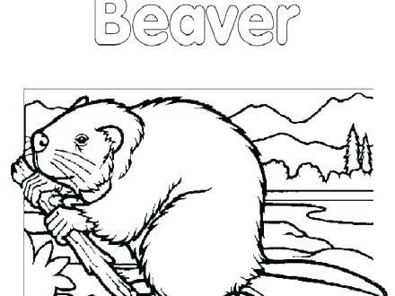 440x330 Yankees Coloring Pages Awesome Of Baseball Coloring Pages Stock Ny