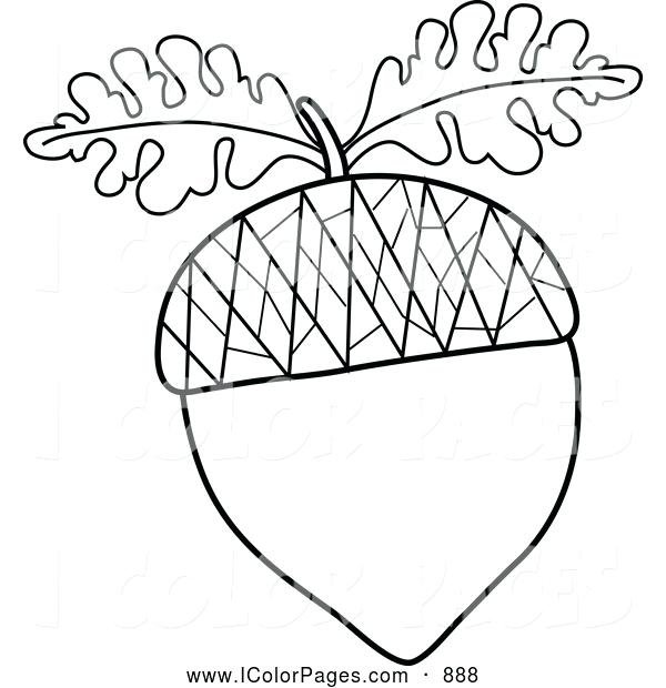 600x620 Leaf Coloring Coloring Trend Medium Size Oak Leaf Coloring Page