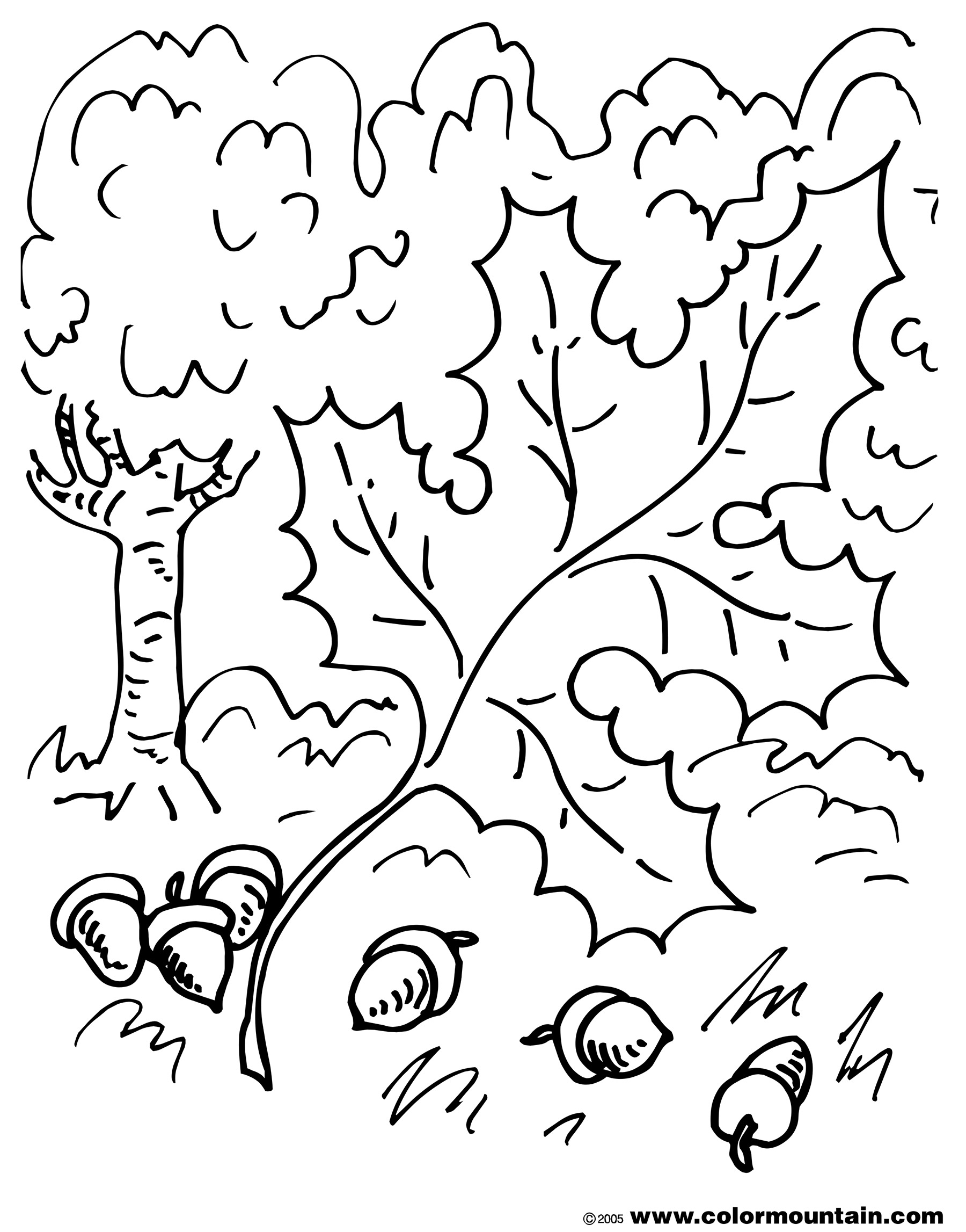 Oak Leaf Coloring Page