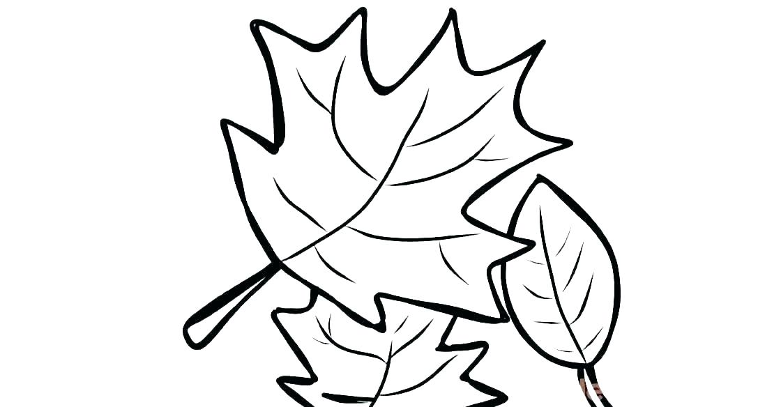1120x584 Oak Leaf Coloring Page Fall Leaf Coloring Page Oak Leaf Coloring