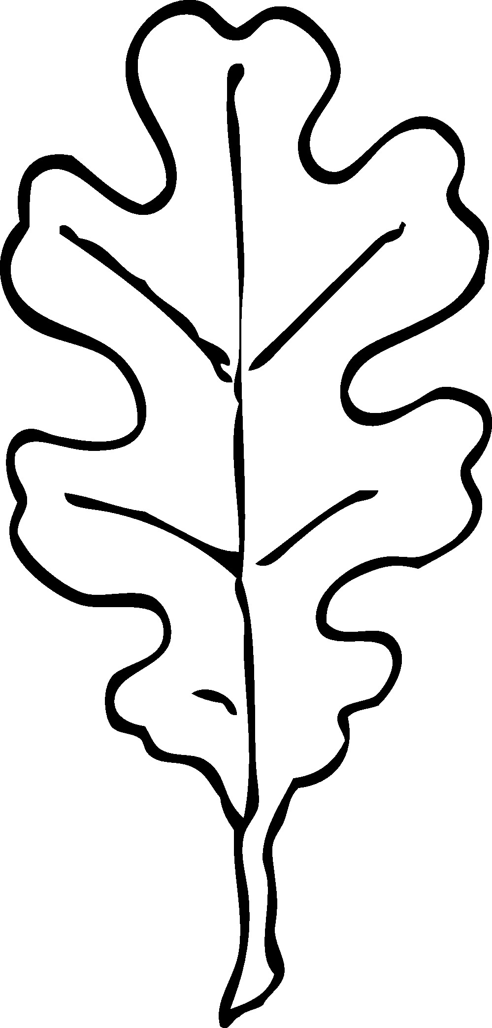 999x2086 Oak Leaf Nature Coloring Page For Kids Beautiful Leaf Outlines