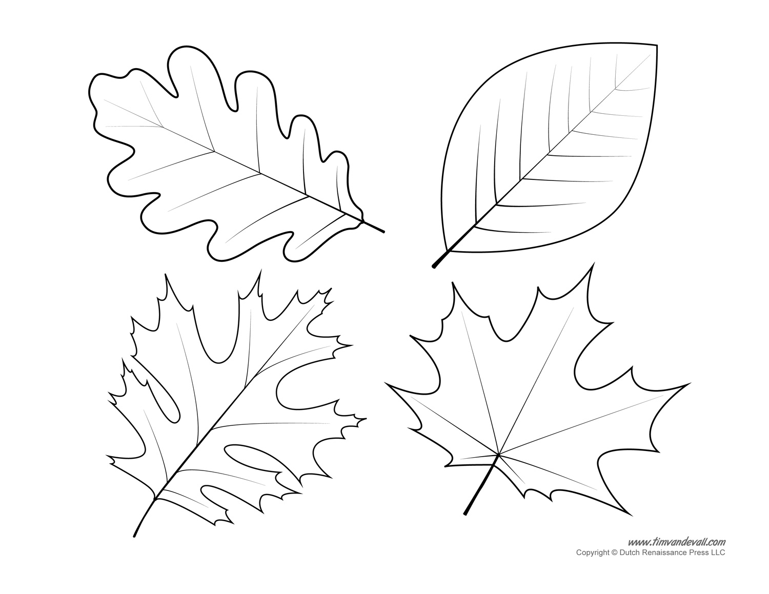 1500x1159 Hurry Leaf Stencils Printable Oak Template Coloring Page Image
