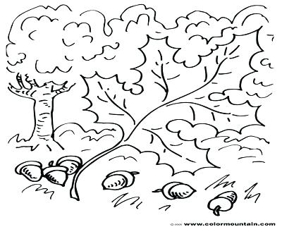 400x322 Oak Leaf Colouring Page Coloring Pages Of Trees With Leaves Tree