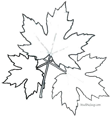 468x486 Autumn Leaf Coloring Pages Picture Of A Leaf To Color Autumn