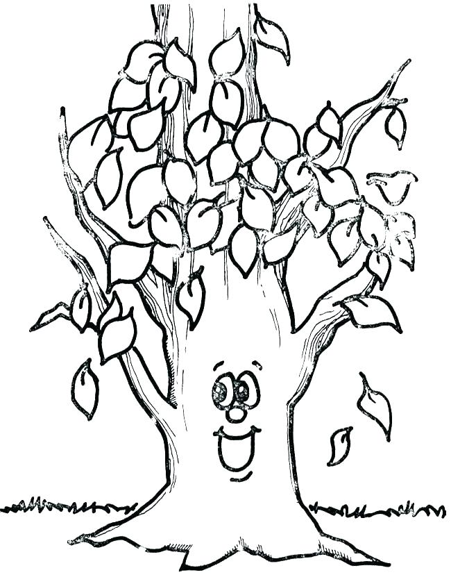 650x841 Bare Tree Branches Coloring Page Bare Tree Coloring Page Oak Tree