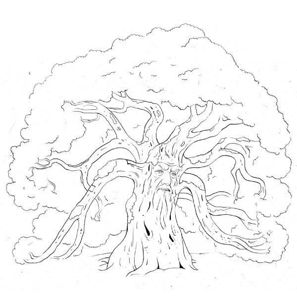 600x600 Forest Guard Oak Tree Coloring Page Color Luna