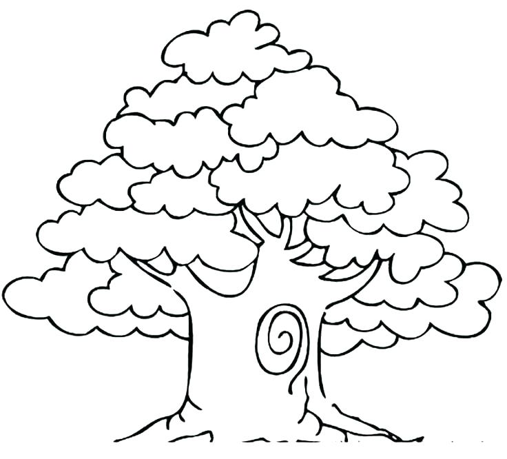 736x666 Free Coloring Pages Fall Trees Kids Coloring A Shady Oak Tree