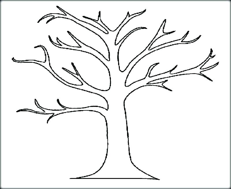 800x654 Oak Tree Coloring Page Fall Tree Coloring Pages Oak Leaf Coloring