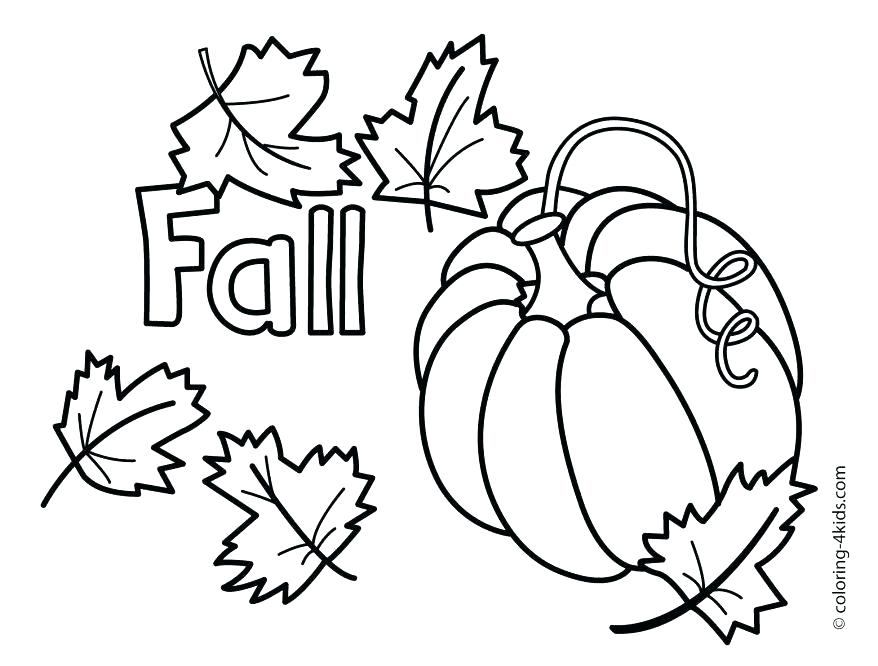 878x666 Oak Tree Coloring Page Tree Coloring Pages Oak Tree Coloring Page