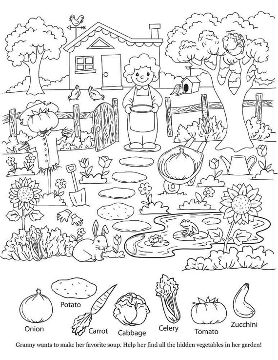 570x737 Hidden Object Pictures Printable Hidden Object Coloring Pages Kids
