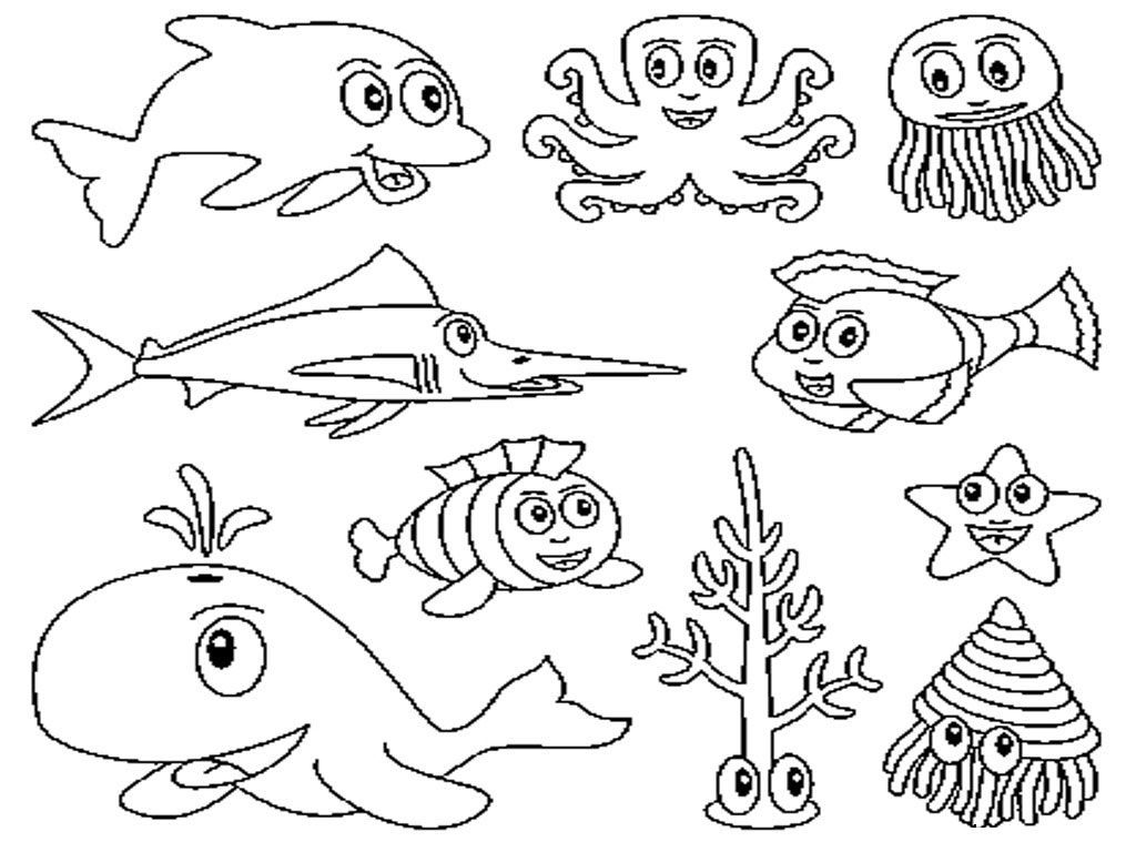 1024x768 Ocean Animals Coloring Pages Sea Animals Coloring Pages