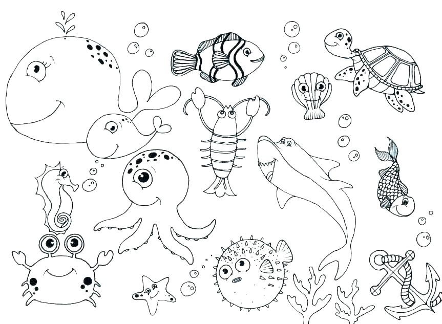 863x633 Sea Animals Coloring Pages Top Rated Coloring Pages Of Sea Animals